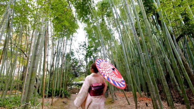 vídeos de stock e filmes b-roll de 4k  follow up shot: a asian woman wearing kimono dress walking through bamboo groves arashiyama and sagano. japanese culture - tradição