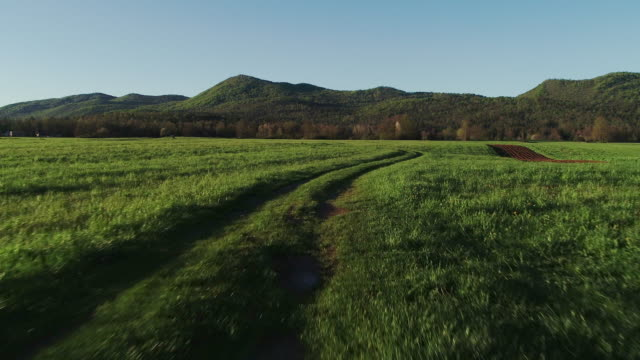 following a country road crossing a meadow - tire track stock videos & royalty-free footage
