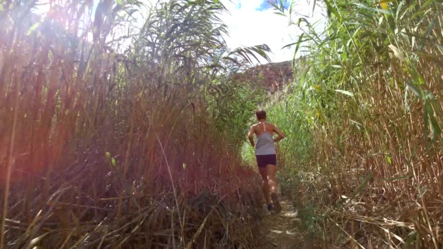 following a fit female runner through the bushes - cross country running stock videos & royalty-free footage