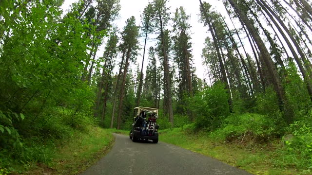 pov following a golf cart through the woods along the cart track - golf course stock videos & royalty-free footage
