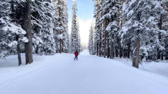 following a kid skiing in telluride usa - inquadratura dalla sciovia video stock e b–roll