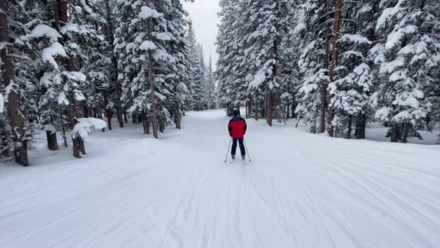 following a teen skiing in telluride colorado - inquadratura dalla sciovia video stock e b–roll