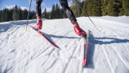 Following cross country skier