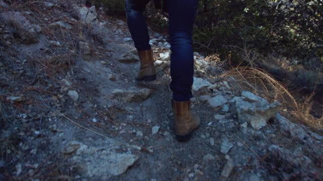 following hikers through forest - handheld shot - sentiero video stock e b–roll