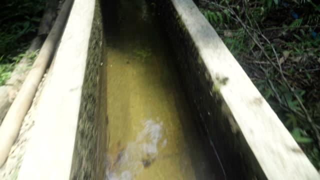 following long gutter in forest by running - sidewalk gutter stock videos & royalty-free footage