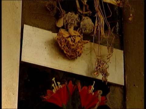 following sew has violin music overlaid cms wreckage tilt down flowers fade to ext/night slow motion cars along road track fade to yugoslavia: north... - slobodan milosevic stock-videos und b-roll-filmmaterial