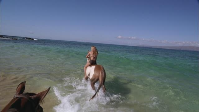 vídeos de stock, filmes e b-roll de slo mo, pov, following woman riding horse in ocean waves, maui, hawaii, usa - montar um animal
