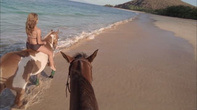 slo mo, pov, following woman riding horse in ocean waves, maui, hawaii, usa - all horse riding stock videos & royalty-free footage