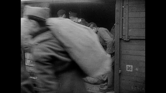 montage food and animals being delivered to soldiers on the maginot line / strasbourg, france - esercito militare francese video stock e b–roll