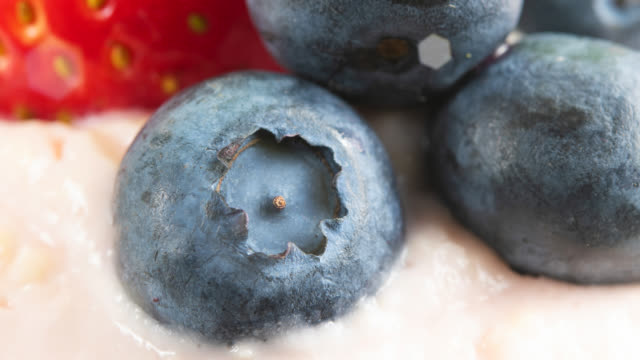 food background of a dessert topping with blueberries - design element stock videos & royalty-free footage