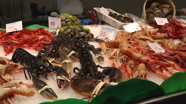 food, crustacean stand - lobster seafood stock videos and b-roll footage