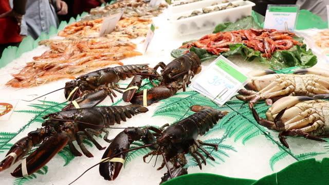 food, crustacean stand - lobster animal stock videos & royalty-free footage