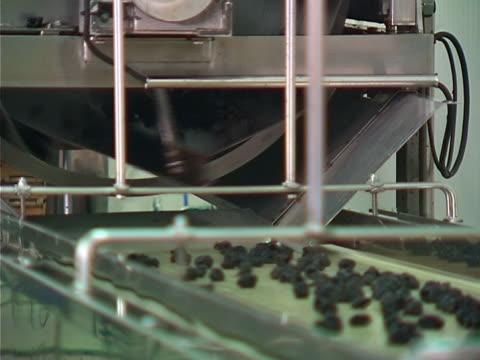 stockvideo's en b-roll-footage met food industry work - pruim
