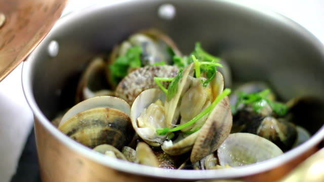 food restaurant seashell - seashell stock videos & royalty-free footage