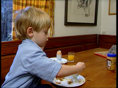 food safety scare; itn england: int eggs along conveyor at packing plant man watching as eggs along on conveyor ???: child sat at table eating boiled... - safety stock videos & royalty-free footage