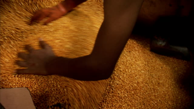 A food service worker pushes a large amount of grain into a vat in Mumbai, India.