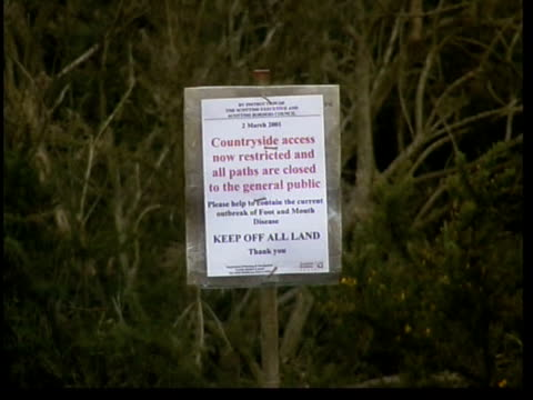 foot and mouth disease: more new cases/jedburgh; lib scotland: borders: jedburgh: no access' sign at entrance to farm infected with foot & mouth gv... - ジェドバラ点の映像素材/bロール