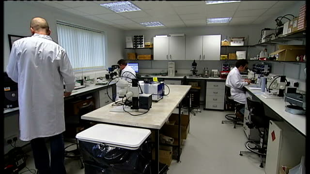 foot and mouth disease outbreak at pirbright institute for animal health laboratories institute of animal health int scientists at work in laboratory... - microscopic animal stock videos and b-roll footage