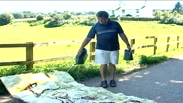 vidéos et rushes de foot and mouth disease outbreak in surrey confirmed; man pouring disinfectant onto material spread across ground poster for cancelled local event on... - panneau d'information