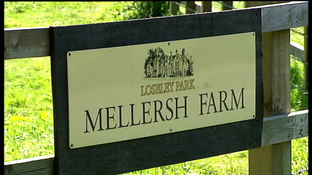 foot and mouth disease outbreak in surrey confirmed; mellersh farm: sign, ' loseley park, mellersh farm' cordon tape blocking entry to footpath on... - foot and mouth disease stock videos & royalty-free footage