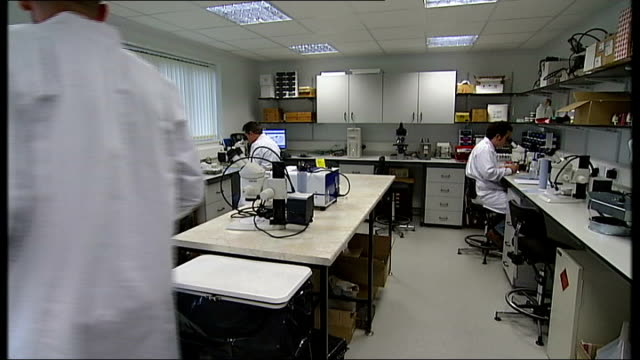 vídeos de stock e filmes b-roll de foot and mouth disease outbreak in surrey pirbright laboratory defends itself viral researchers and scientists at work in lab automatic gate closing... - febre aftosa