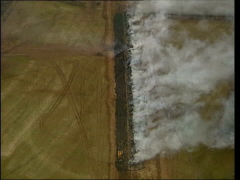 foot and mouth disease special; lib air view over smoking pyre of burning animals bodies of slaughtered cattle on john todhunter's farm - foot and mouth disease stock videos & royalty-free footage