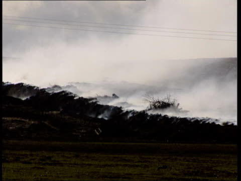 britain declaired risk free; lib england: northumberland: ext gvs smoke rising from funeral pyre of slaughtered animals infected with foot and mouth... - moving up点の映像素材/bロール