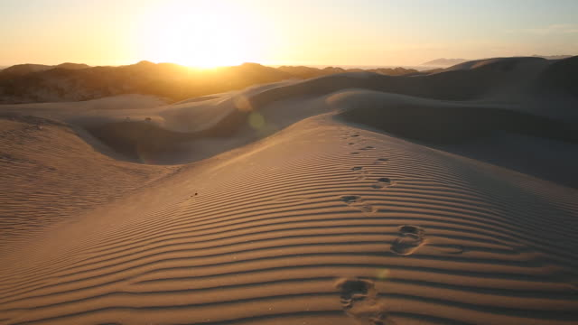 foot prints and people walking on the open sand dunes with bright sun shining. - sand dune stock videos & royalty-free footage