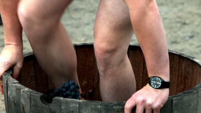Foot that crushes grapes in a barrel to make wine