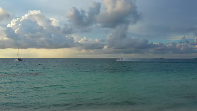 4k footage aerial view of seaplane taking off from sea in maldives - tropischer baum stock-videos und b-roll-filmmaterial