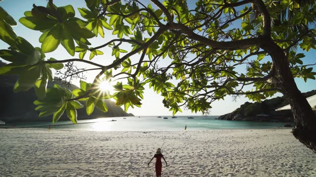 vidéos et rushes de 4k footage beautiful girl running on white sand beach into the crystal clear water in racha island, phuket, thailand. - arbre tropical