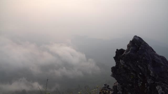 4K beelden close-up van mist over het diepe forest op het moment van de zonsopgang vanaf het uitkijkpunt op de Doi Pha Tang in Chiang Rai, Thailand, natuur en reizen concept
