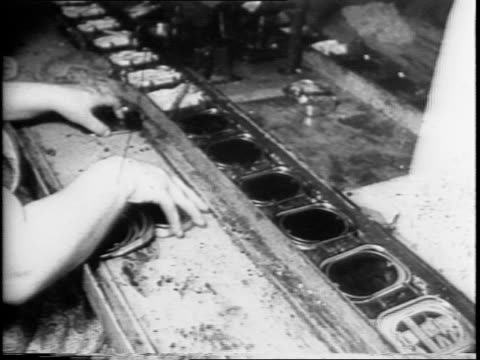 footage from a cannery / various shots of the sardines and the workers from the water through sorting and the canning process / machines seal the... - canning stock videos & royalty-free footage