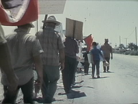 footage from a united farm workers rally - business or economy or employment and labor or financial market or finance or agriculture stock videos & royalty-free footage