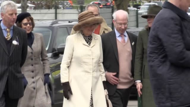 footage from ladies day at cheltenham festival as the duchess of cornwall, andy murray, eamonn holmes, jeremy kyle and zara tindall attend the... - エイモン ホームズ点の映像素材/bロール