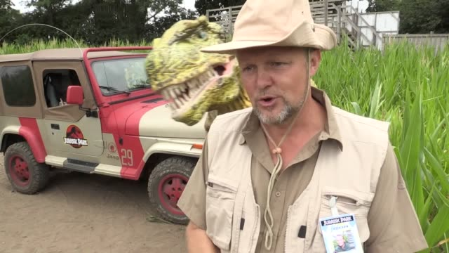 footage from the 2018 launch of the york maze europe's biggest maze which is cut into a dinosaur design to mark the 25th anniversary of jurassic park... - triceratops stock videos and b-roll footage