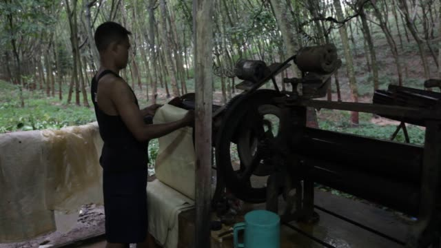 Footage of a farmer demonstrating rubber sheets production at his rubber farm in Klaeng district Rayong province Thailand on Tuesday October 27 2015...