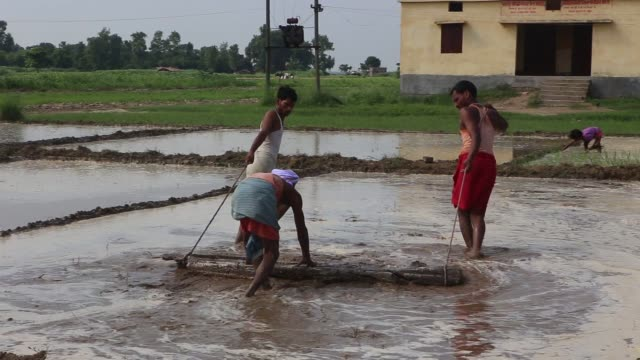 Footage of a man being shaved and the banks of the Ganges River in Raghopur Bihar India on Friday July 24 2015 Shots man is shaved by barber wider...