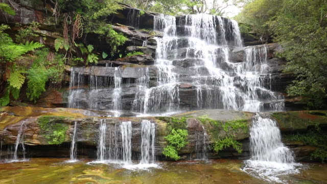 footage of frenchs creek falls, sydney, australia - falling water stock videos & royalty-free footage