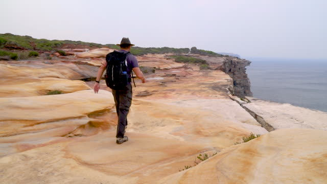 footage of hiker, royal national park, nsw, australia - recreational pursuit stock videos & royalty-free footage