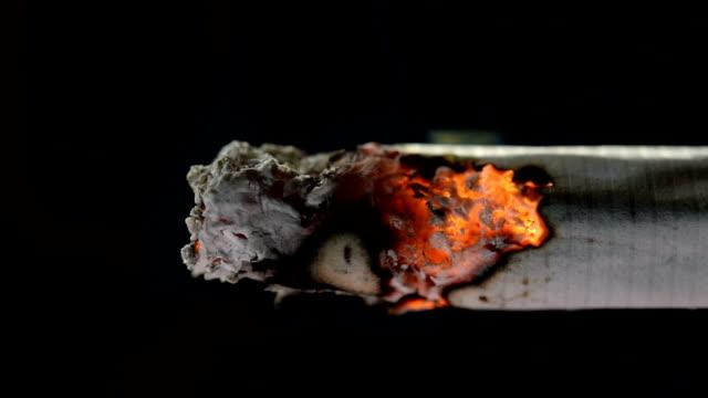 vidéos et rushes de images de cigarette allumée et brûlante avec de la fumée sur fond noir - cigarette