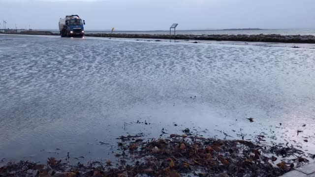 footage of seaweed being cleared from salthill promenade along the coast in galway, ireland. - seaweed stock videos & royalty-free footage