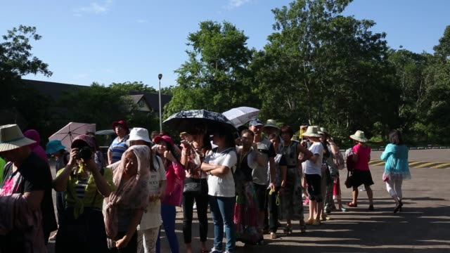 footage of signs and tourists standing in line to buy tickets for the angkor wat temple complex in siem reap cambodia on monday june 29 2015 shots... - angkor stock videos and b-roll footage