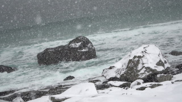 4K Footage of snow storm with sea beach at the winter season in lofoten Islands, Norway