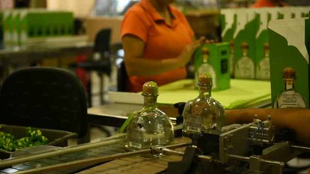 Footage of Tequila Patron bottles being packaged into boxes in Atotonilco Jalisco Mexico on April 5 2017 Shots wide shots of bottles being placed...
