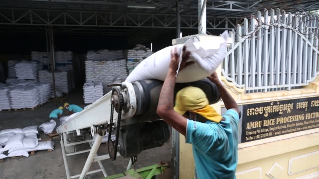 footage of the amru rice co processing factory as rice is processed in phnaom penh cambodia on monday june 22 2015 shots man organizes small bags in... - 小さい点の映像素材/bロール