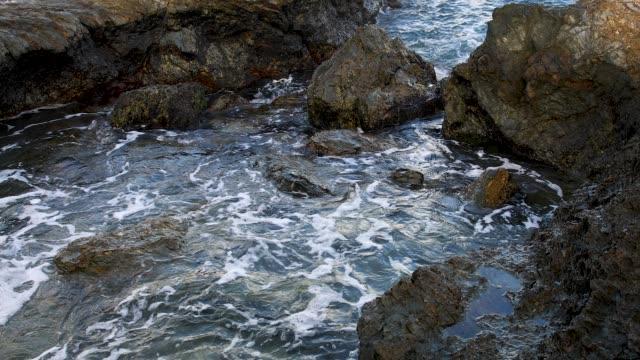 4k footage of tidal rock pool - gezeitentümpel stock-videos und b-roll-filmmaterial