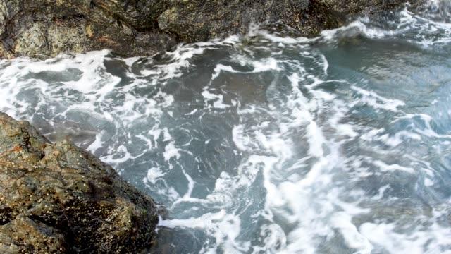 4K Footage Of Tidal Rock Pool