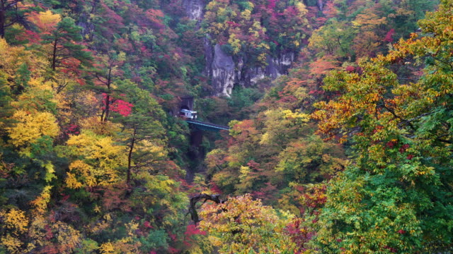 4k footage of train running out from the tunnel of amazing naruko gorge in multicolor autumn season when raining in japan - tokushima prefecture stock videos & royalty-free footage