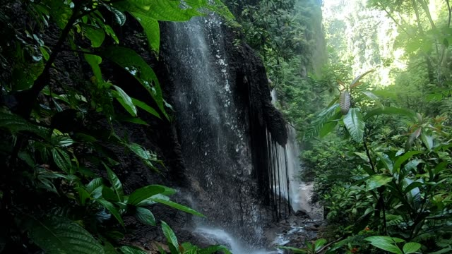 footage of waterfall in indonesia from wearable camera - tropical rainforest stock videos & royalty-free footage